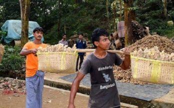 ২০০ টাকার উপরে আদা বিক্রি করলে ব্যবস্থা